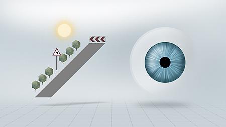 Kraftigt lys = fotopisk syn med lille pupil. Stor fokusdybde, afslappet rumopfattelse